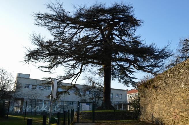 2015-02-10 Nantes Quartier Zola (11)