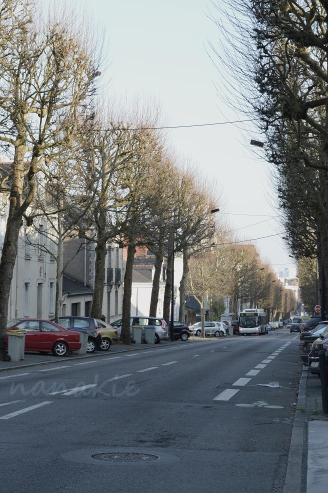 2015-02-10 Nantes Quartier Zola (6)