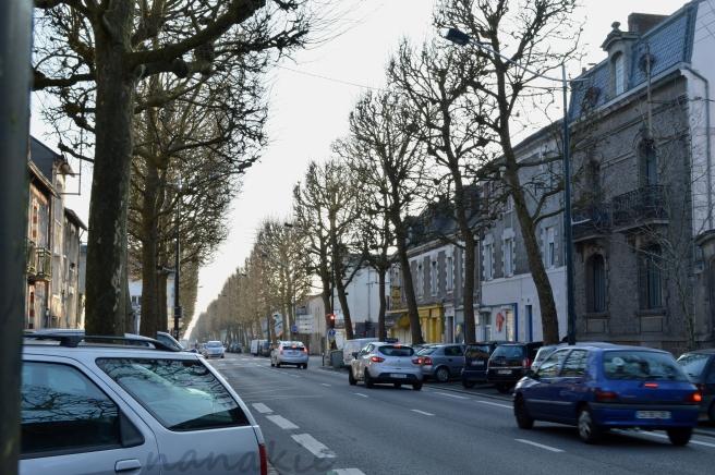 2015-02-10 Nantes Quartier Zola (9)
