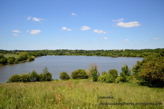 2013-06-03. Lac de Beaulieu Couëron (1)