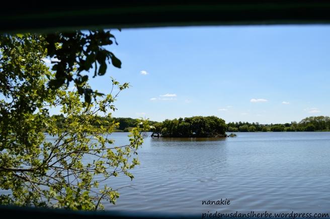 2013-06-03. Lac de Beaulieu Couëron (3)