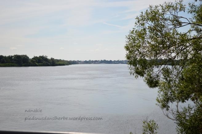 Bords de Loire - Couëron 44