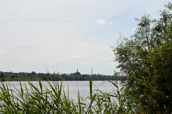 Bords de Loire et vue sur Le Pellerin - Couëron 44