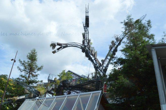 2015-08-23 Machines de l'île Arbre du héron