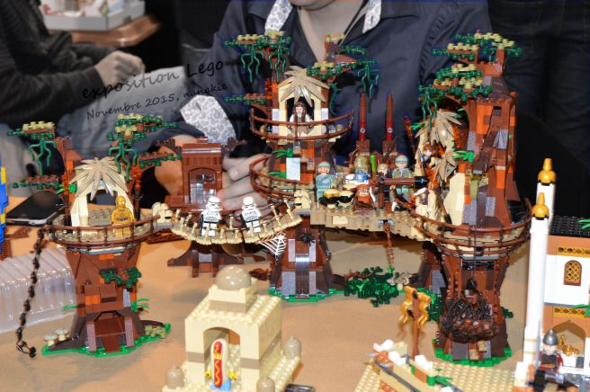 Art to Play Lego et Roseraie 023