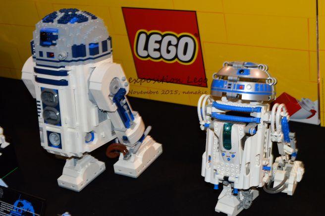 Art to Play Lego et Roseraie 026