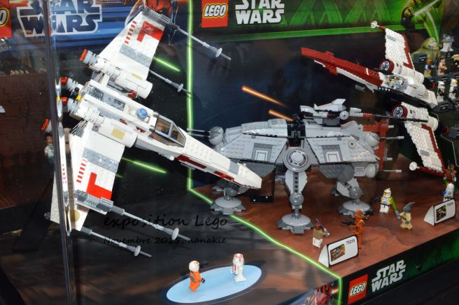Art to Play Lego et Roseraie 028