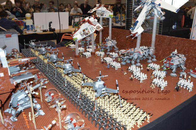 Art to Play Lego et Roseraie 030