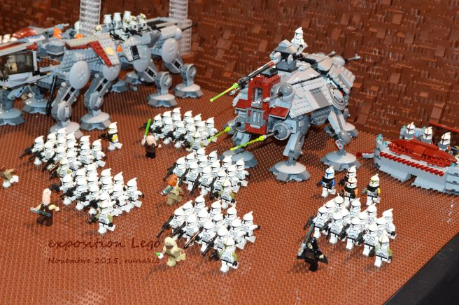 Art to Play Lego et Roseraie 031
