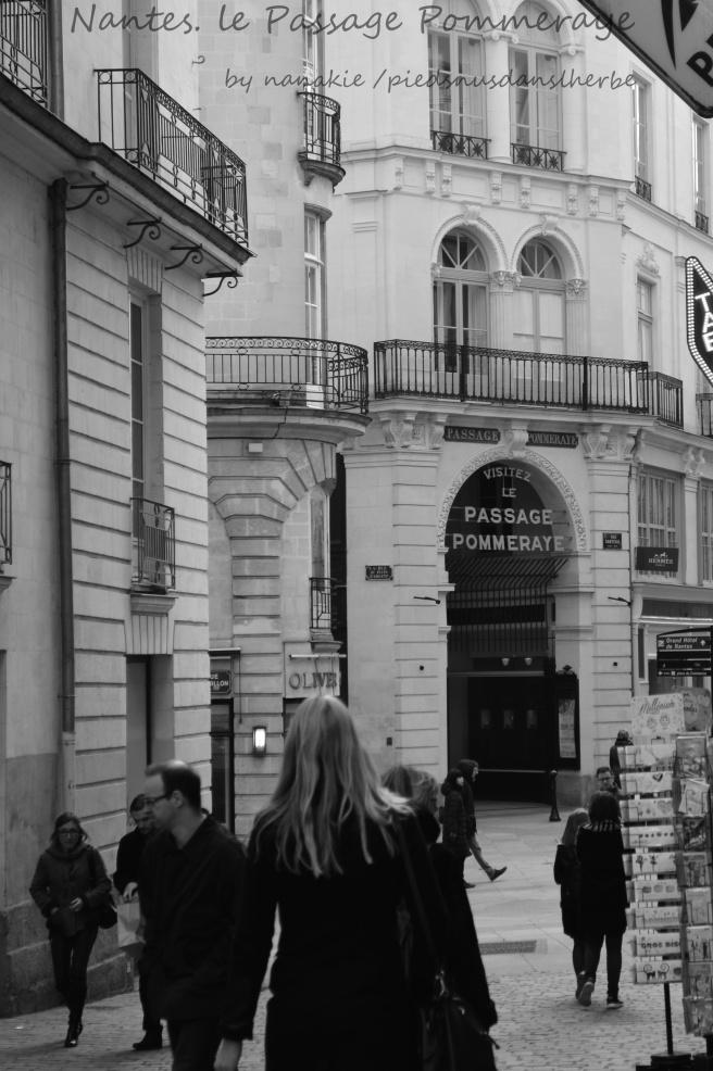 2017-02-09-Nantes-passage-pommeraye-1