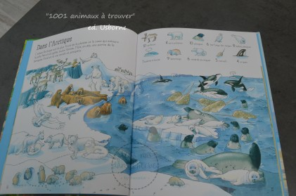 """""""1001 animaux à trouver"""" editions Usborne"""