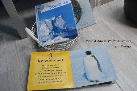 """les animinis """"Sur la banquise"""" editions Mango"""