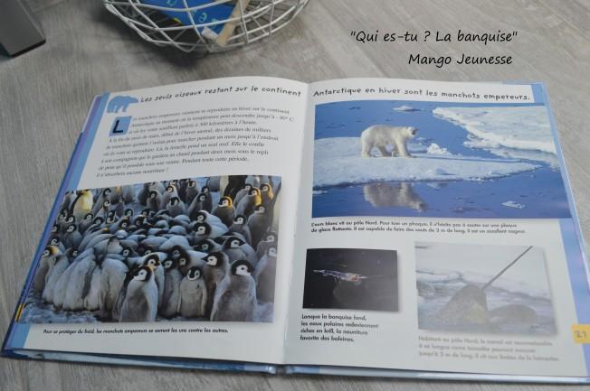 """Qui es-tu ? La banquise"" editions Mango"